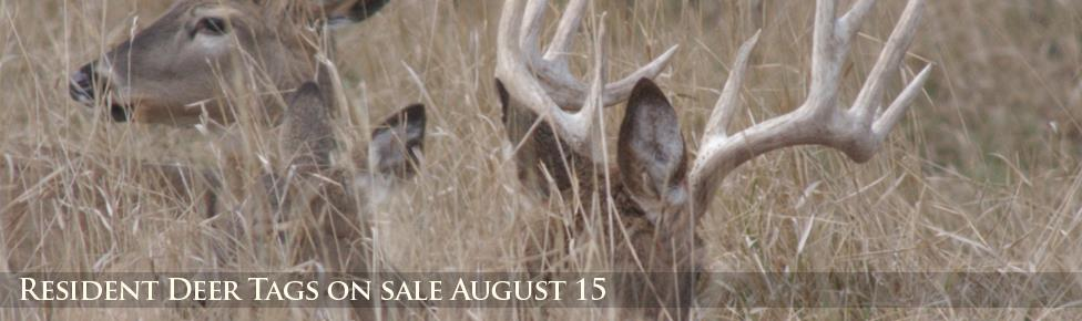 Resident Deer Tags on sale August 15