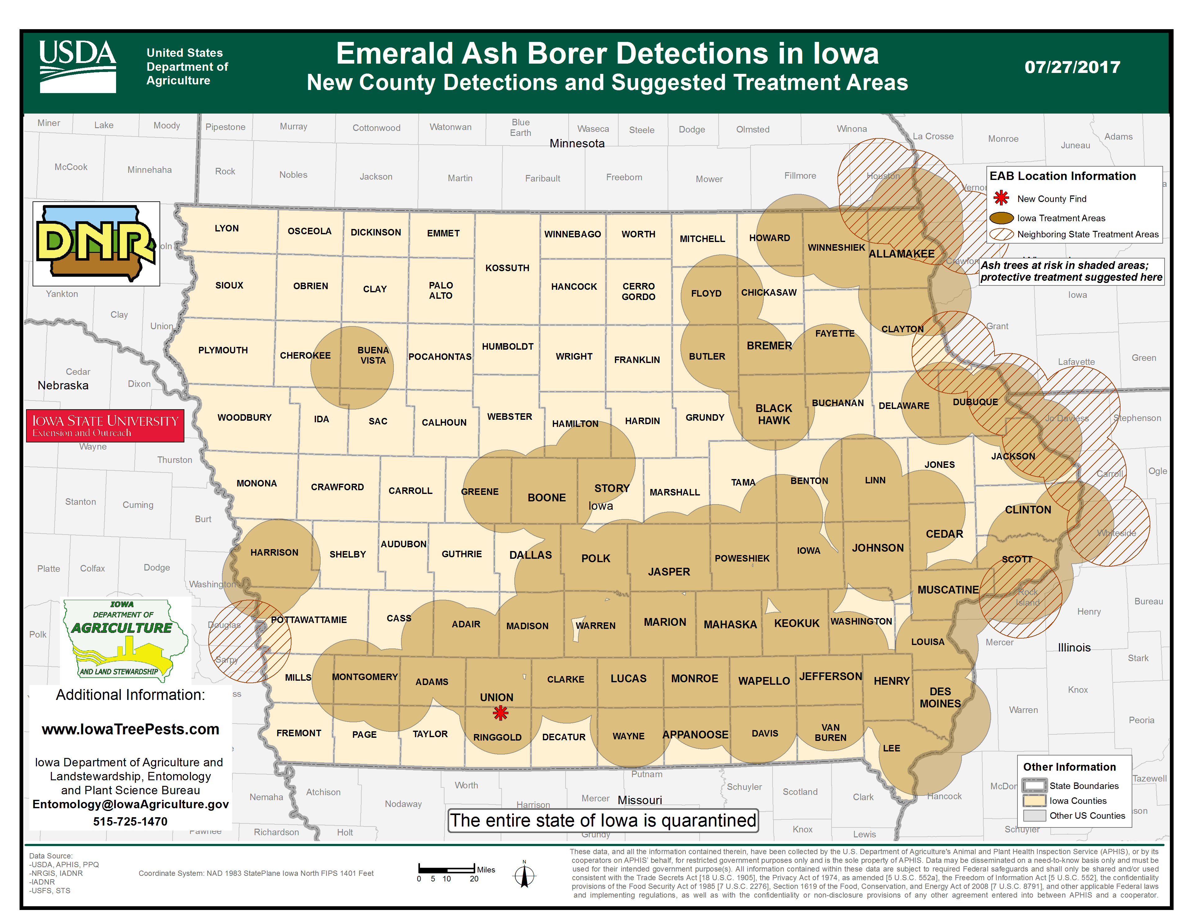 Emerald ash borer research paper