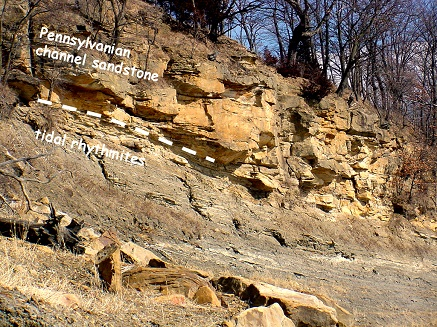 Exposure of Pennsylvanian sandstone within the White Breast Recreation Area.
