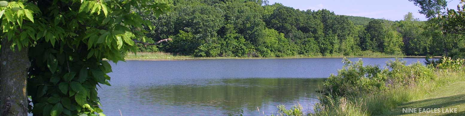 view of nine eagles lake in the summer