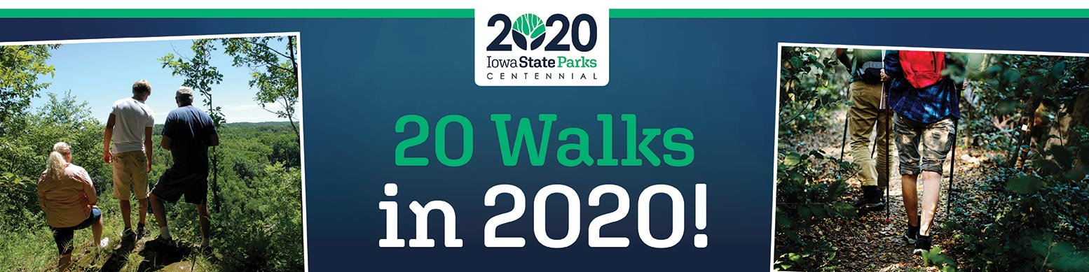 20 walks in 2020