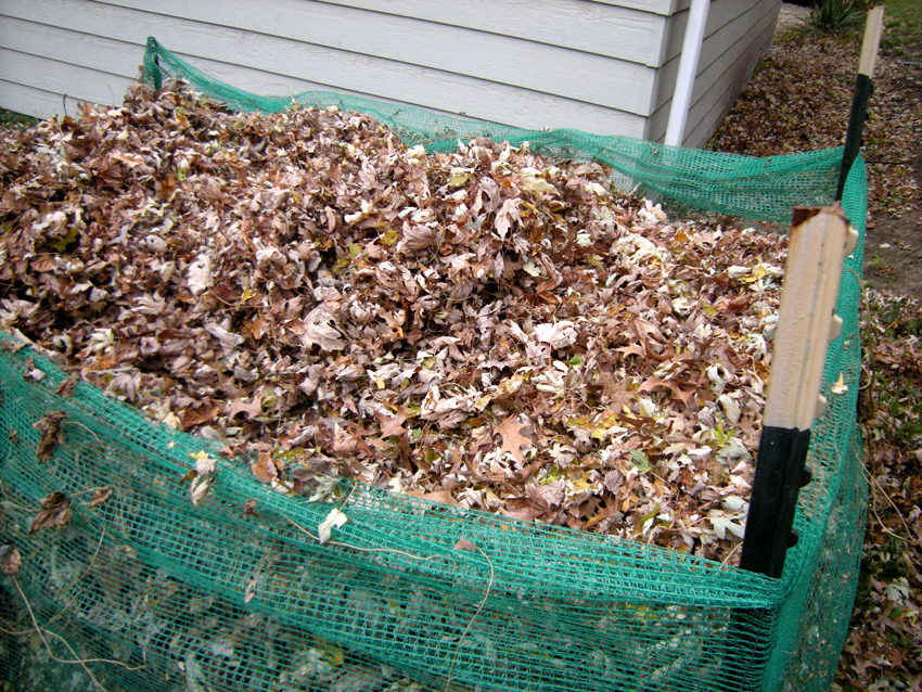 Home composting tips from the Iowa DNR