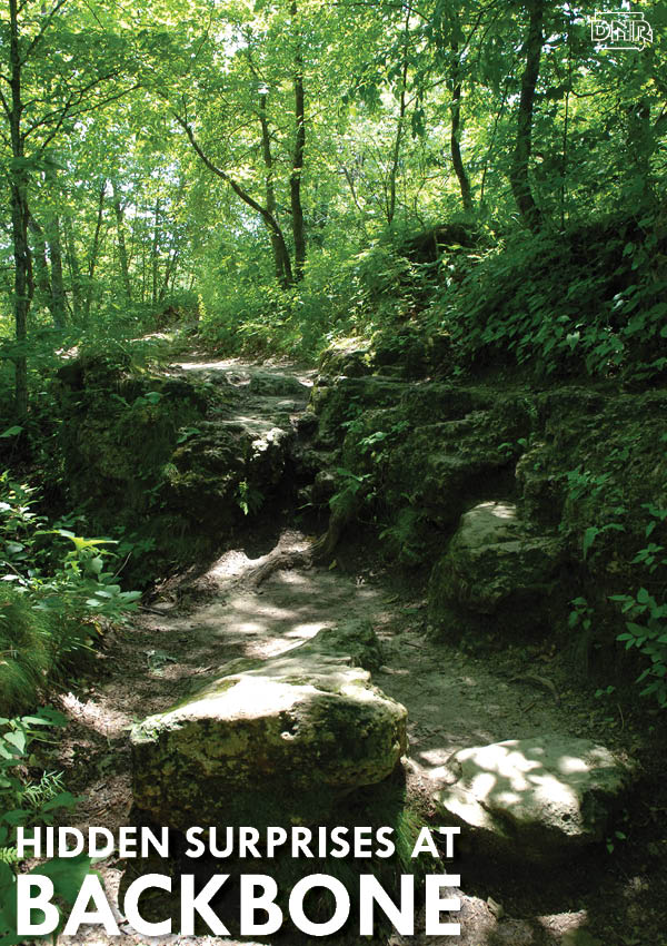 9 Hidden Surprises at Backbone State Park | Iowa DNR