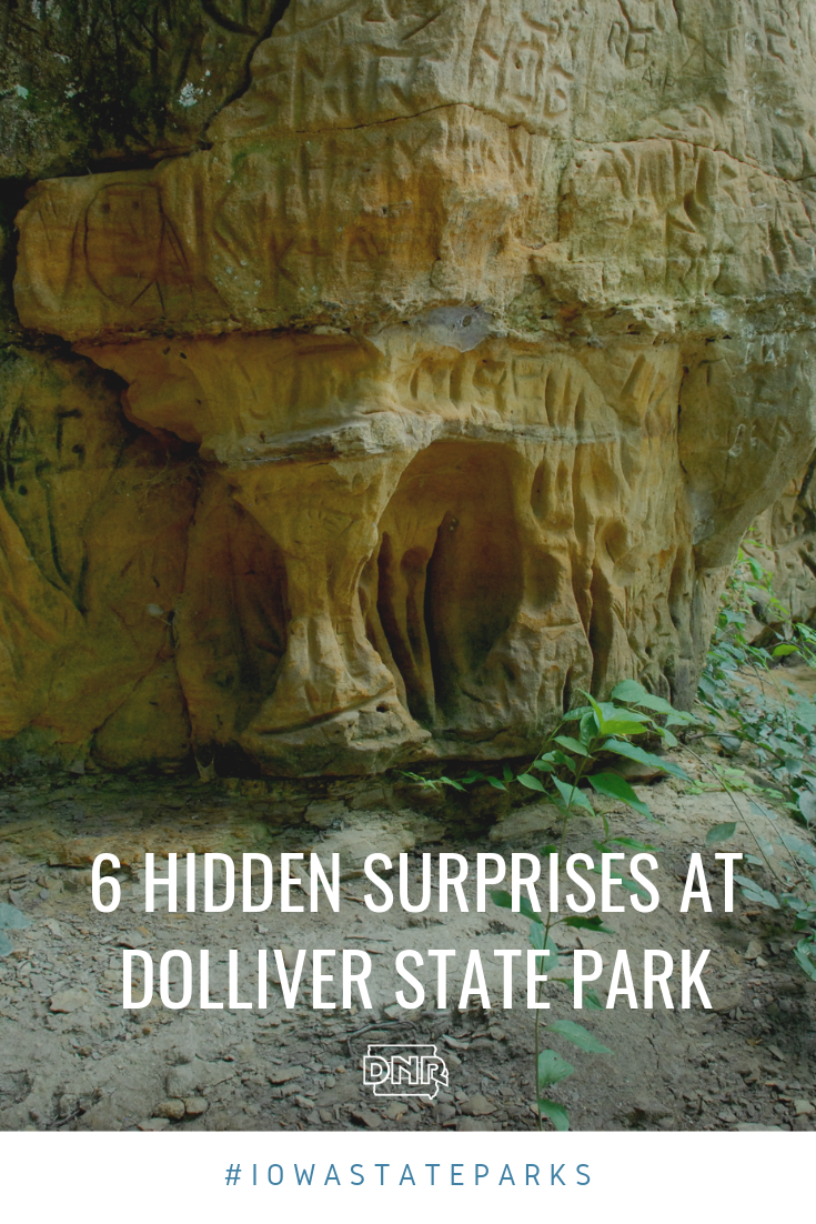 Visitors to Dolliver Memorial State Park can walk a trail to see this 100-foot sandstone bluff, which gets its name from the mineral deposits left behind from erosion of the stone. |  Iowa DNR