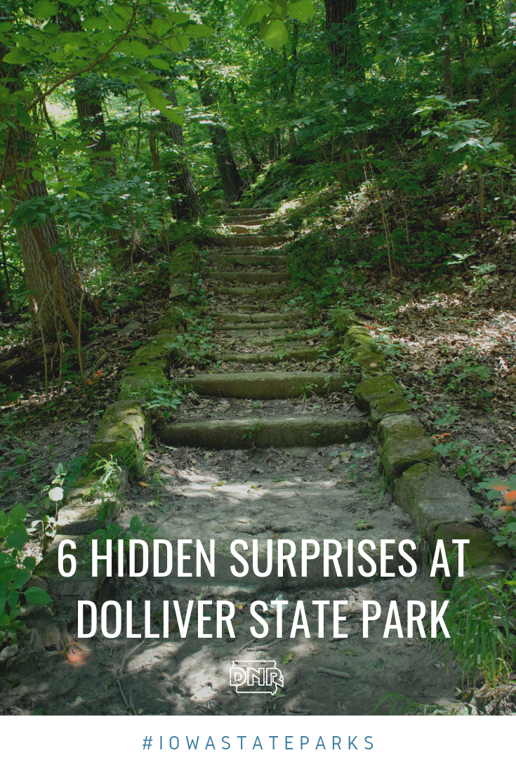 Located along the Des Moines River just south of Fort Dodge, Dolliver Memorial State Park is packed with hidden gems and unique natural history.  |  Iowa DNR