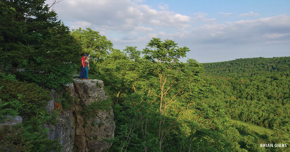 Yellow River State Forest in extreme northeast Iowa's Allamakee County presents a variety of scenic vistas to enjoy such as this one at Larkin Overlook.  |  Iowa DNR