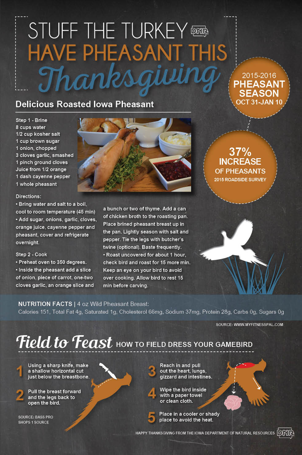 Stuff turkey this Thanksgiving and serve pheasant instead! Delicious Roasted Pheasant recipe | Iowa DNR