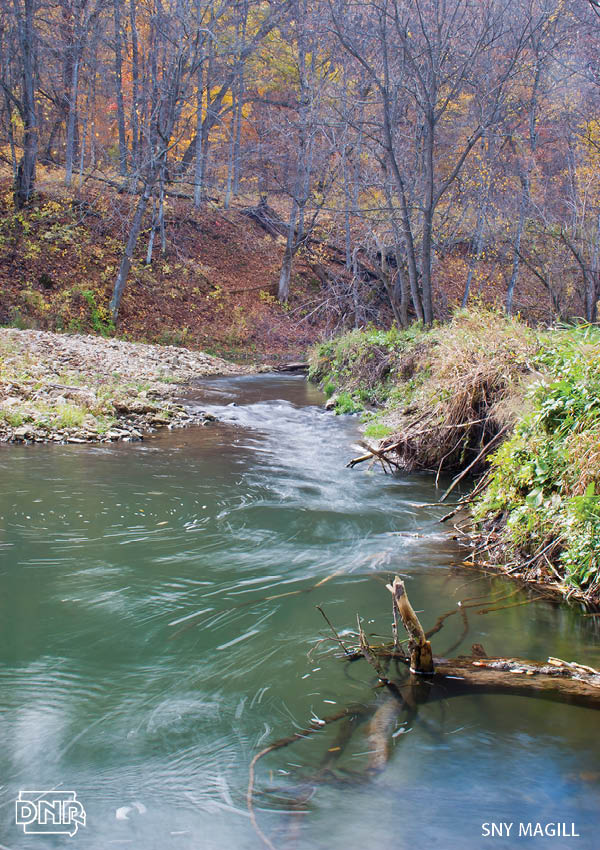 Sny Magill and 9 other top destinations for fall trout fishing in Iowa | Iowa DNR