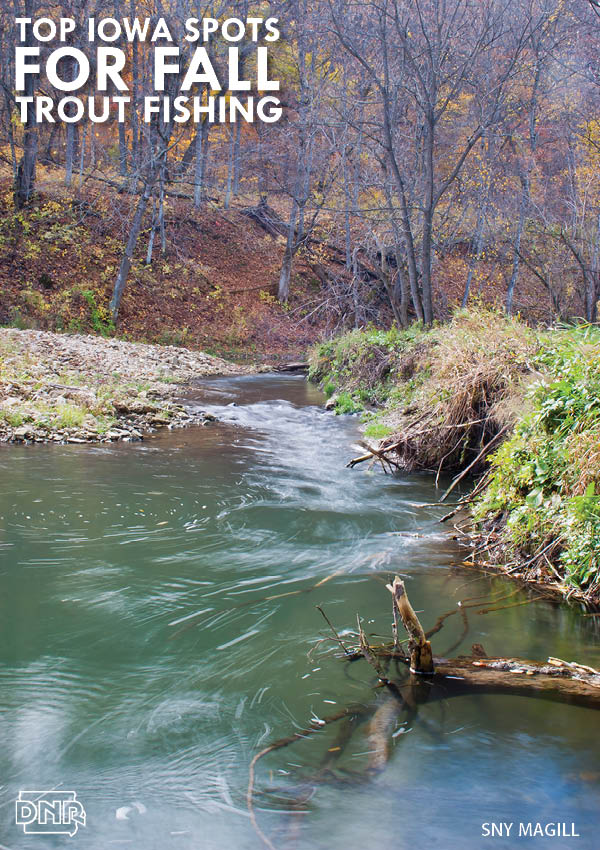 iowa trout streams map Top 10 Destinations For Trout Fishing This Fall In Iowa Dnr News iowa trout streams map