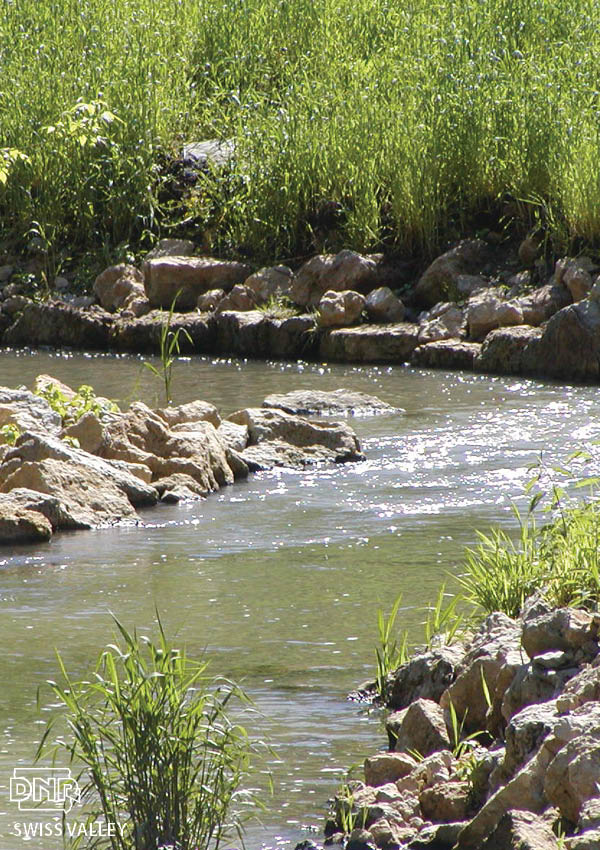 Northeast iowa goes wild for trout dnr news releases for Iowa out of state fishing license
