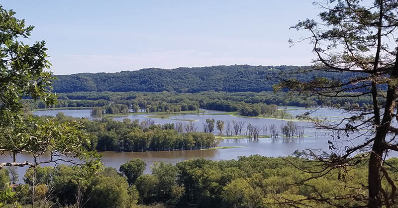7 hidden surprises at Yellow River State Forest (including this overlook from the mountain bike trails) | Iowa DNR