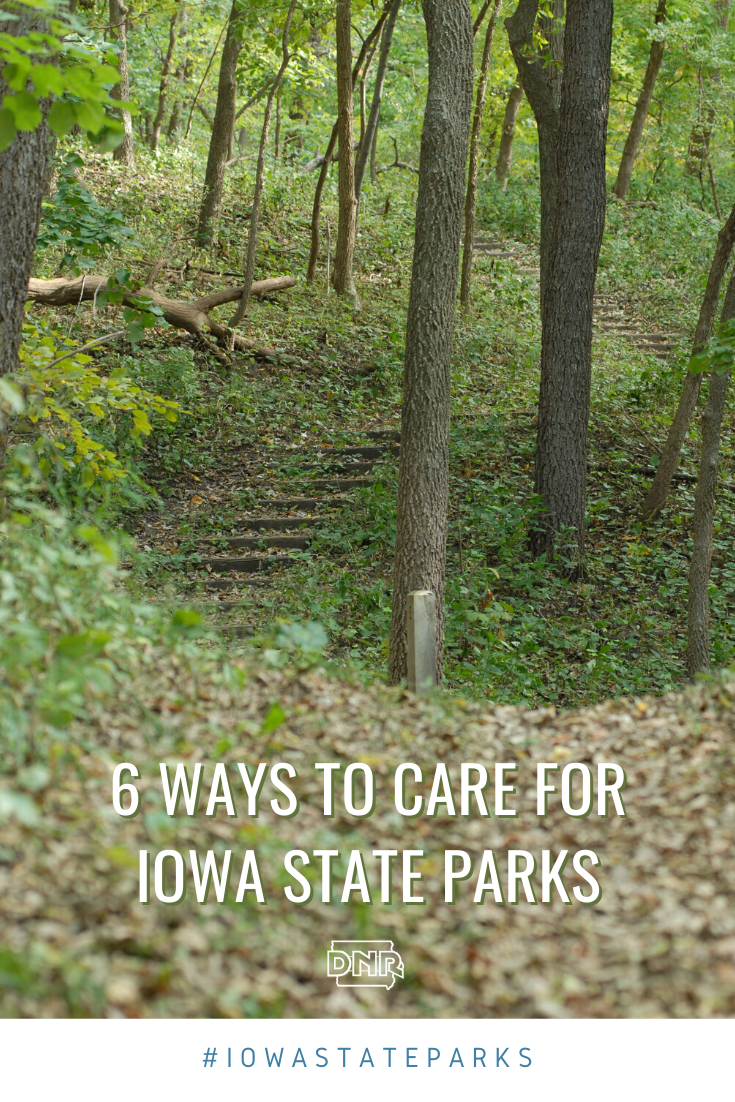 6 ways you can help take care of Iowa's State Parks when you visit   |  Iowa DNR