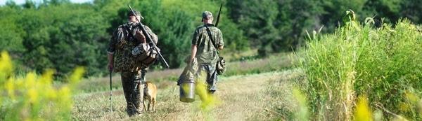 Iowa DNR predicts a great pheasant hunting season in 2018 ...