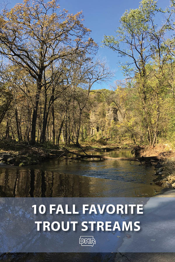 Our 10 favorite trout fishing streams for fall | Iowa DNR