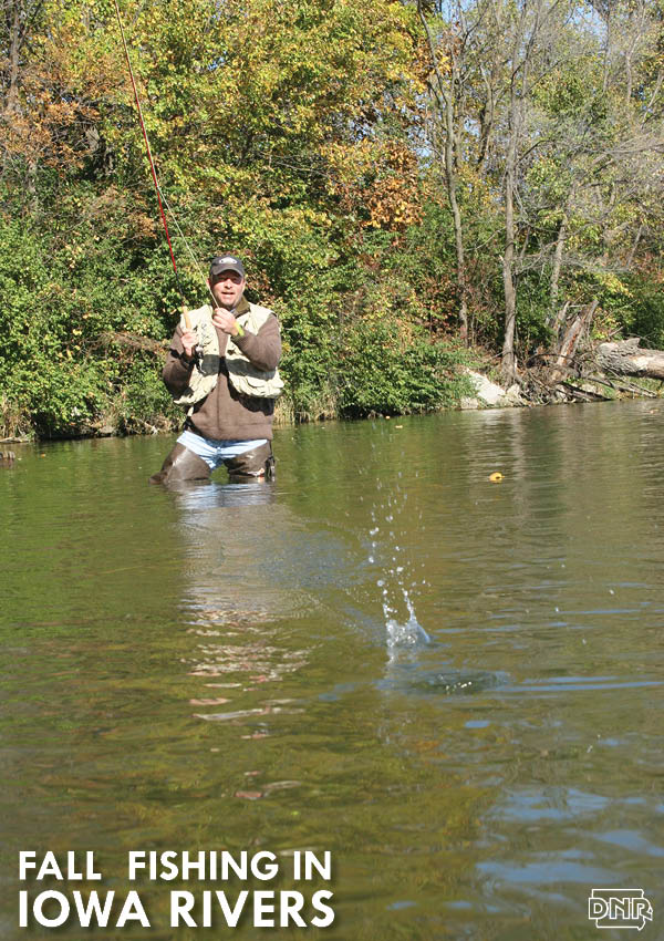 Enjoy Iowa's natural landscapes fishing Iowa's rivers and streams this fall. A unique angling challenge is hidden around every bend. | Iowa DNR