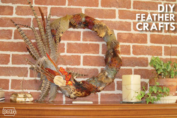 Make your own diy pheasant turkey feather art dnr news for Turkey country arts and crafts
