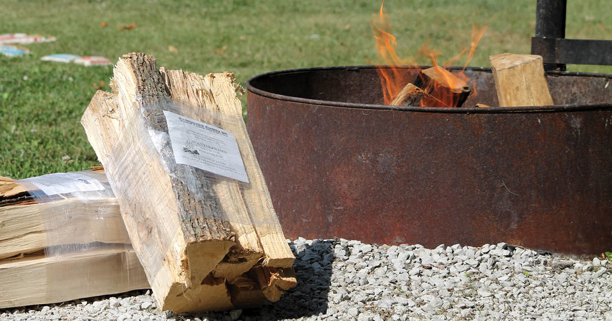 firewood stacked next to a campsite fire ring  | Iowa DNR