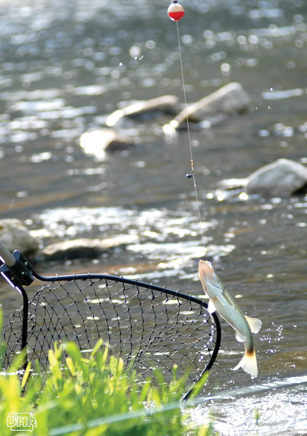 Take the Mission Fishin challenge with these great locations in the 2017 Iowa Fishing Forecast | Iowa DNR