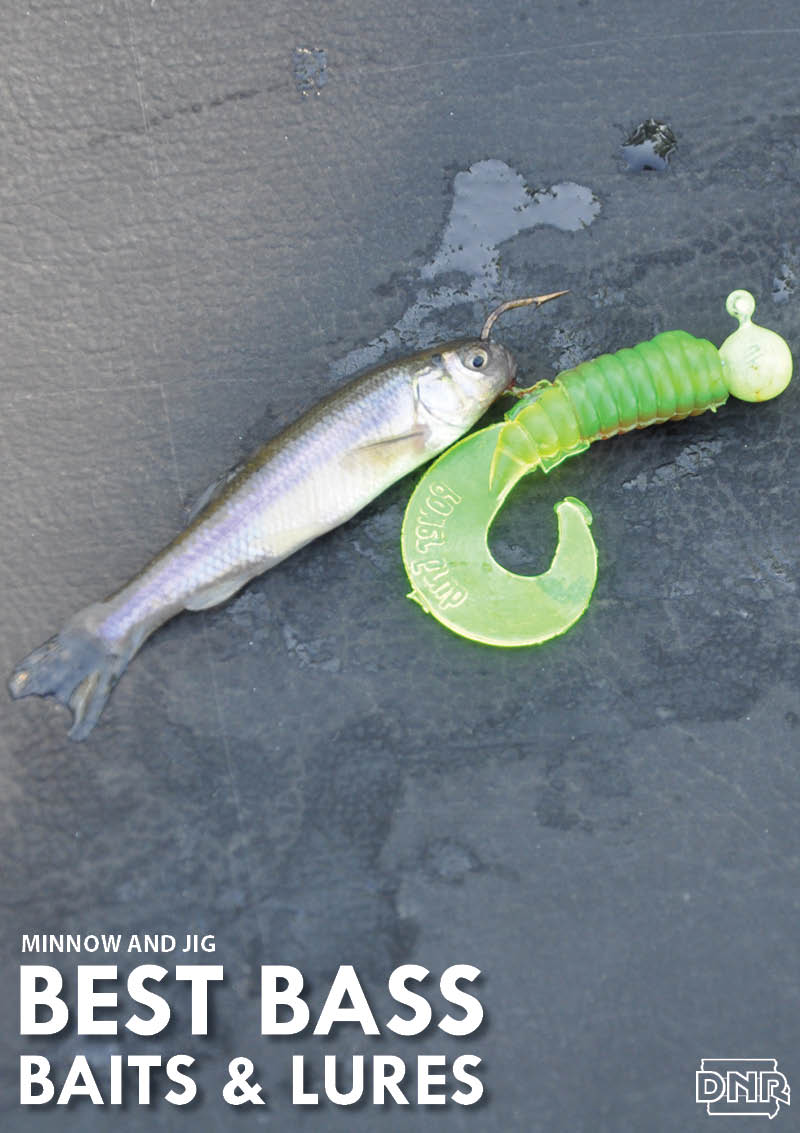 6 best bass baits and lures for summer dnr news releases