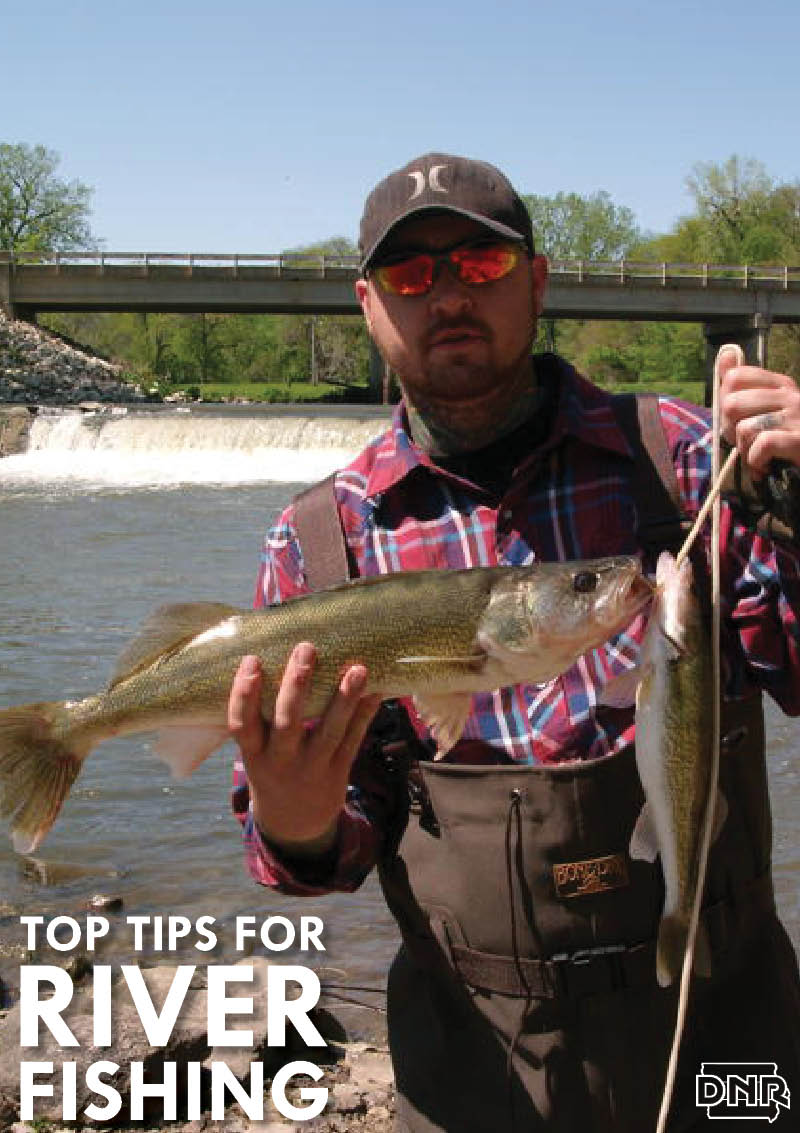 Get the lowdown on river fishing in iowa dnr news releases for Iowa fishing license