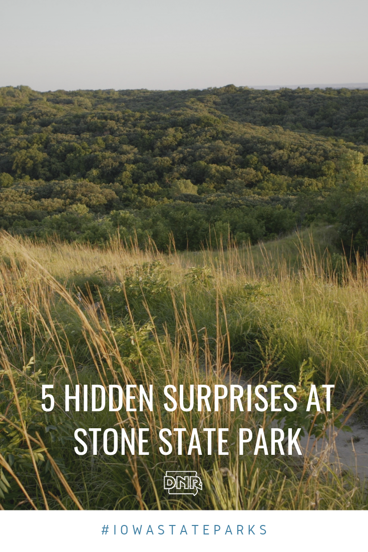 Nestled in the northern portion of Iowa's Loess Hills overlooking the South Dakota and Iowa border, Stone State Park is rich in local history, diverse plant life and rugged terrain.  |  Iowa DNR