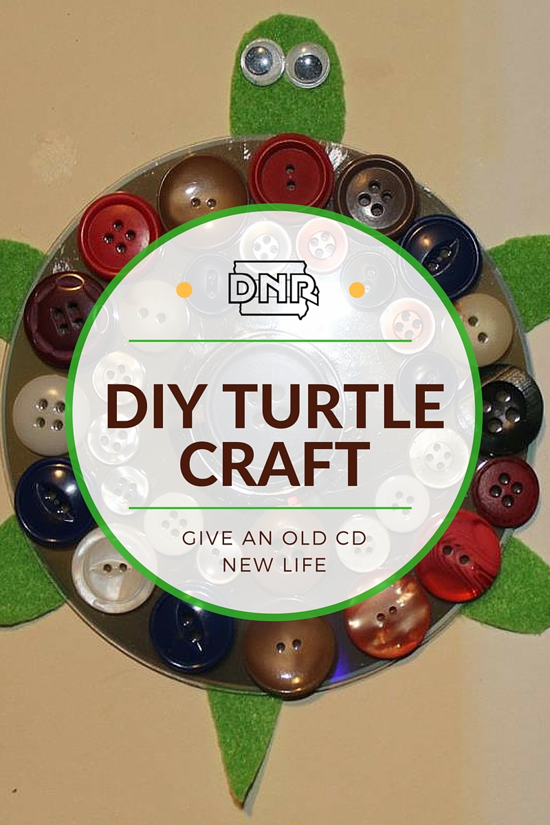 Salvage an old CD and have your kids make this DIY turtle craft | Iowa DNR