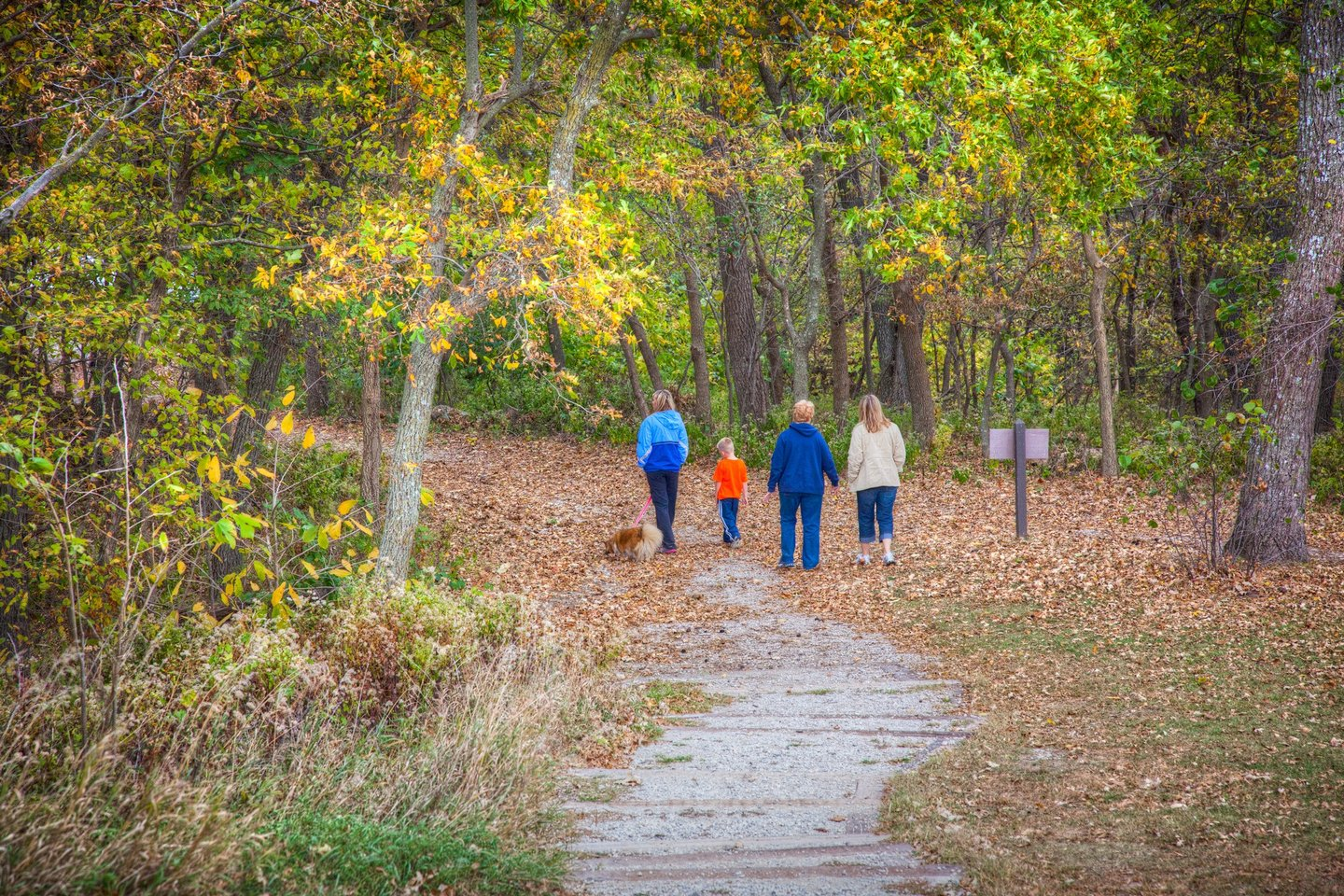 Waubonsie State Park is a top pick for hiking  |  Iowa DNR