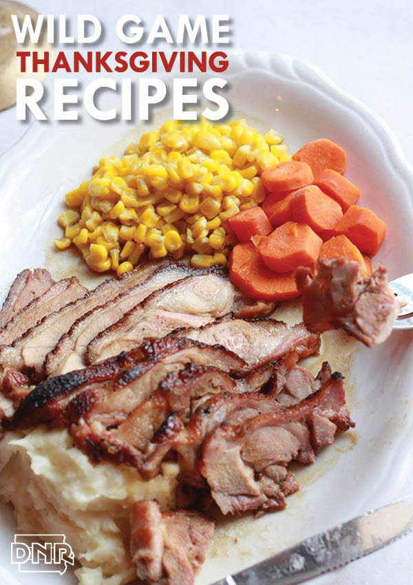 Wild game Thanksgiving recipes from the Iowa DNR