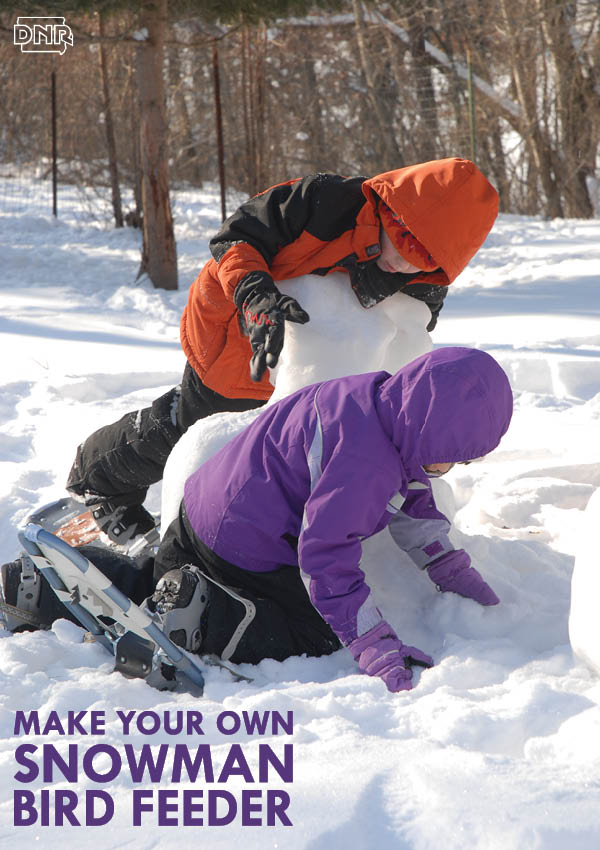 Build your own snowman bird feeder this winter! From Iowa Outdoors magazine