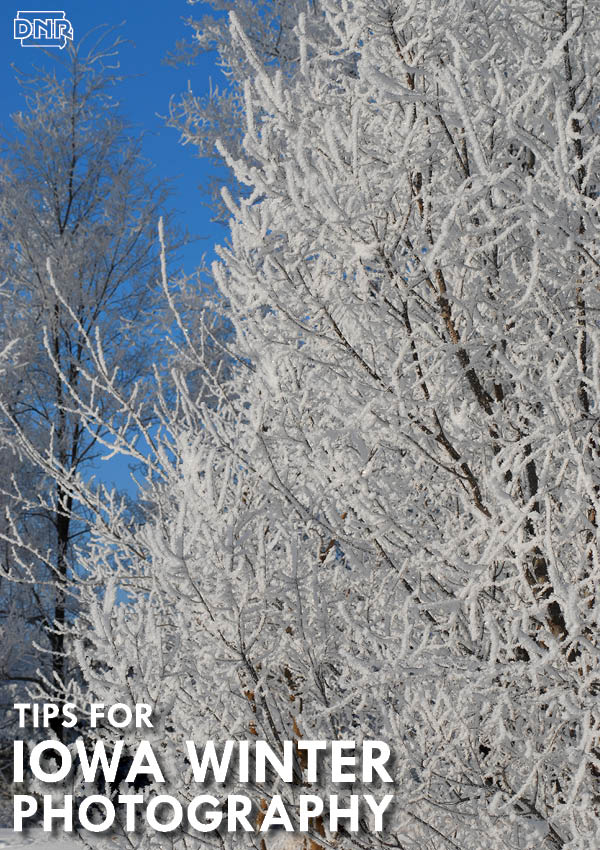 Winter photography tips from Iowa Outdoors magazine