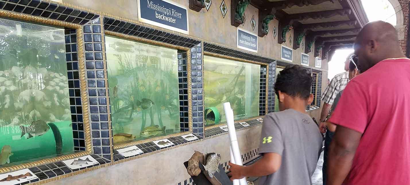 state fair building fish tanks