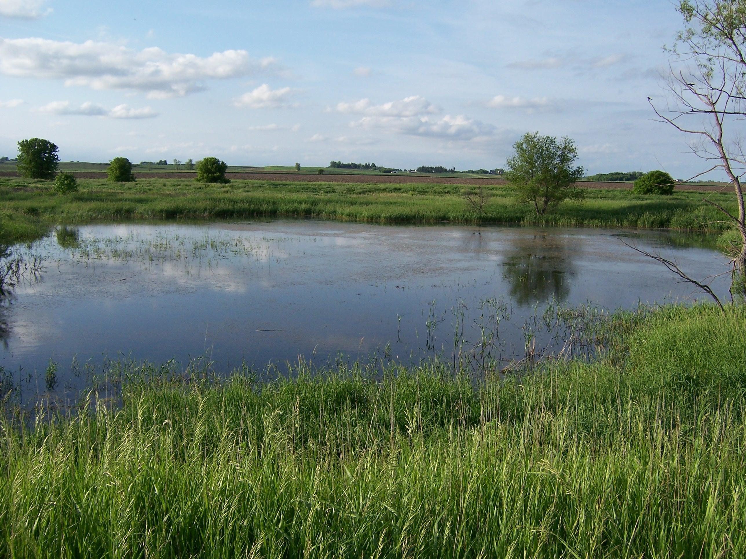 landscape of water