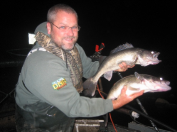 A fisheries biologist holds two walleye collected during fall night electrofishing