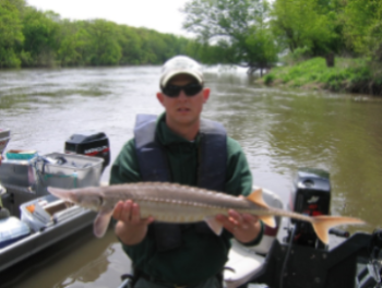 A fisheries staff member holding a shovelnose sturgeon collected as part of a research project.
