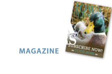 Subscribe to Iowa Outdoors Magazine