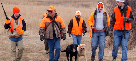Hunting safetly, group of hunters with dogs