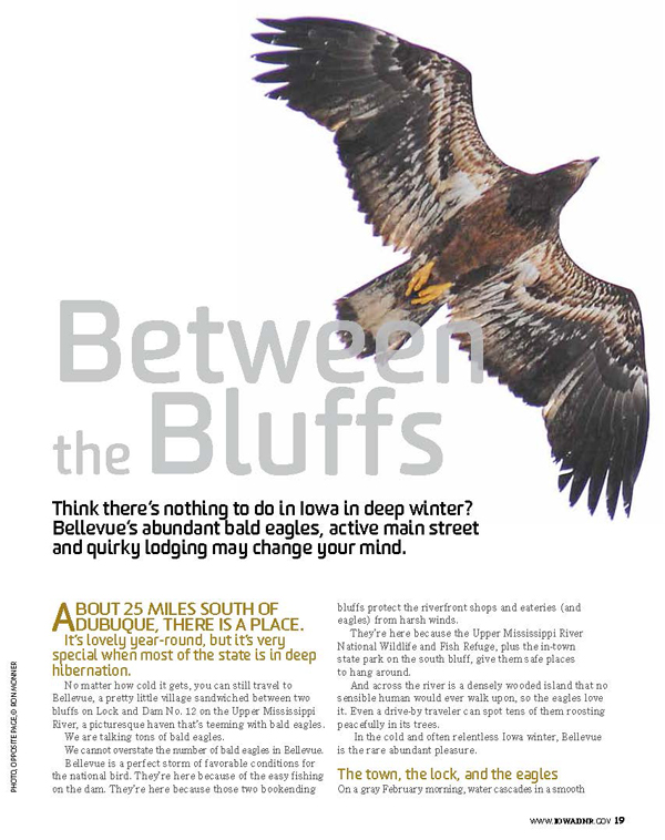 Between the Bluffs: Bald Eagle Watching at Bellevue State Park from Iowa Outdoors magazine