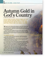 Autumn Gold in God's Country