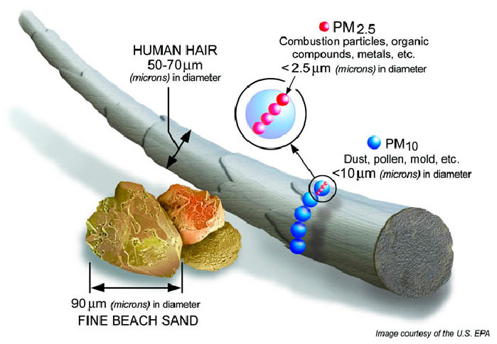 Depiction of the size of PM10 and PM2.5 with respect to a human hair (fine beach sand averages 90 microns in diameter, human hair averages 50-70 microns in diameter, PM10 is 10 microns and PM2.5 is 2.5 microns)