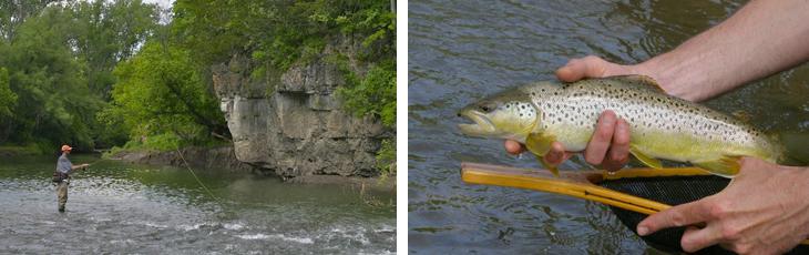iowa trout streams map Trout Streams iowa trout streams map