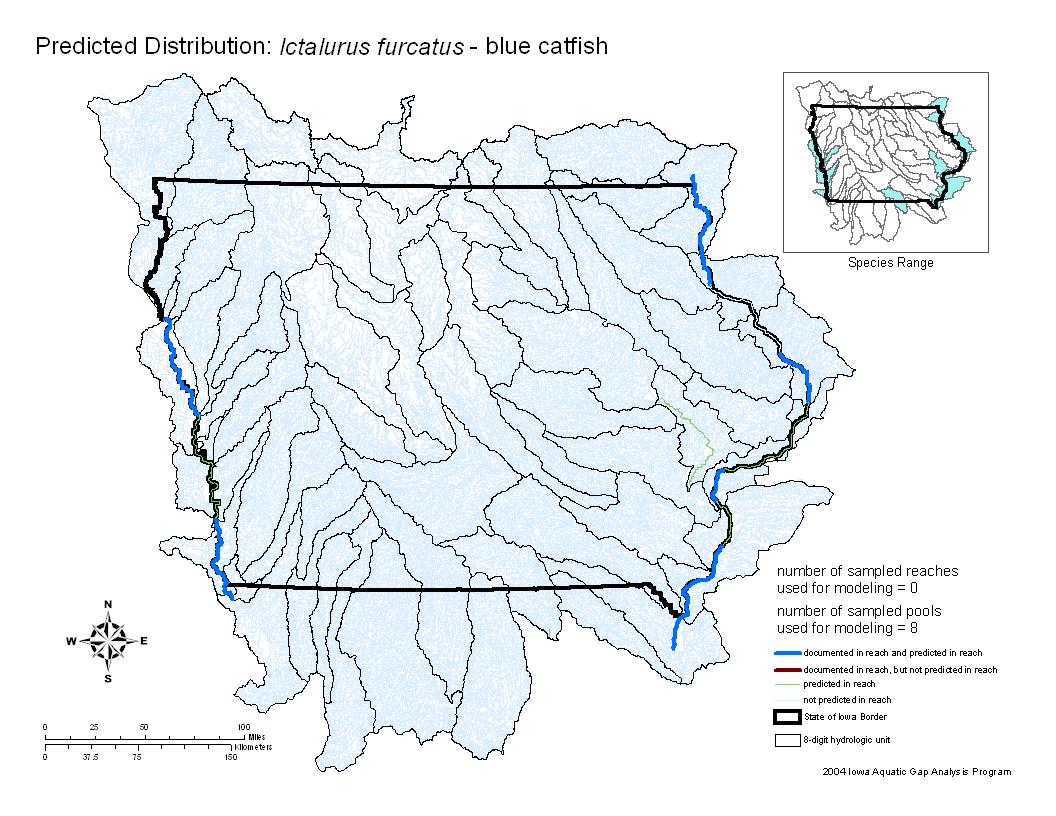Blue Catfish Distribution