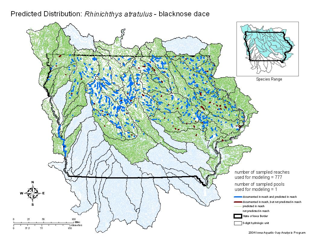 Blacknose Dace Distribution