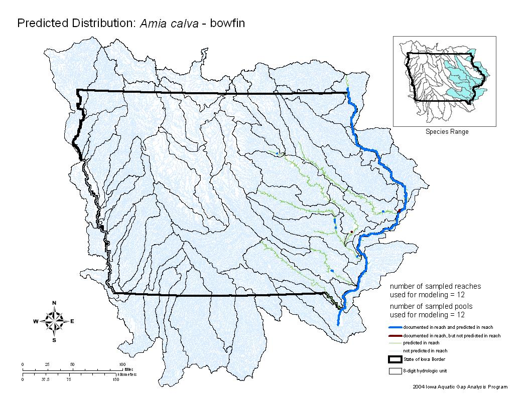 Bowfin Distribution