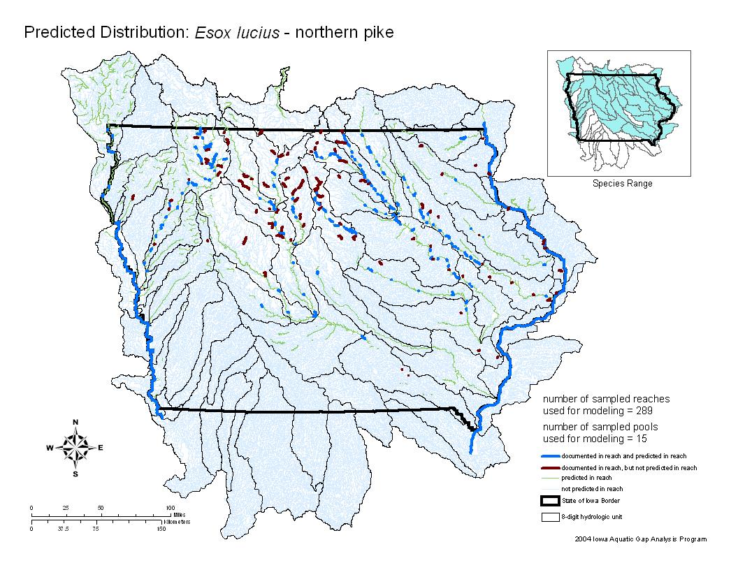 Northern Pike Distribution