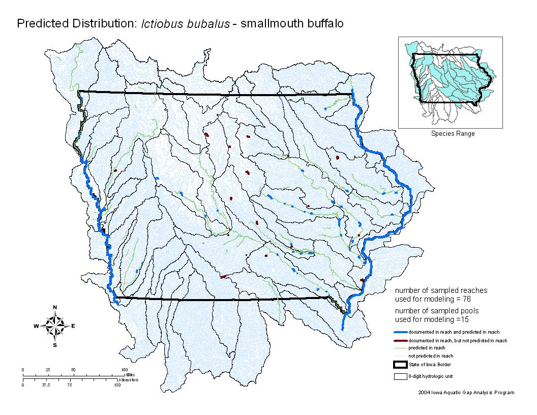 Smallmouth Buffalo Distribution