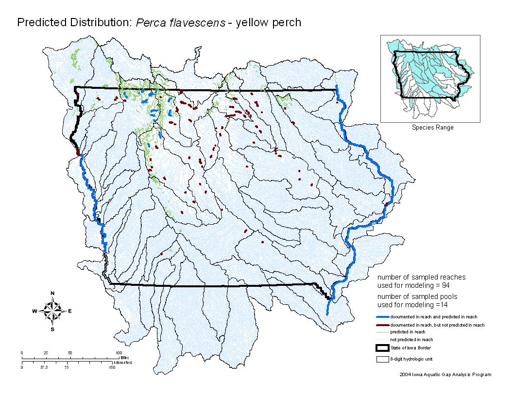 Yellow Perch Distribution