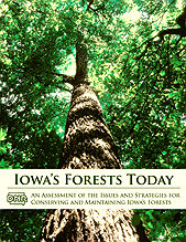 Iowa forests today