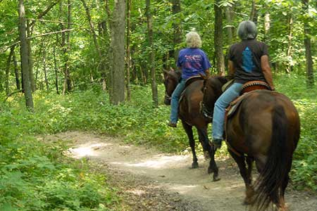 Equestrian trail riding