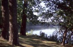 View of Lake at Lacey Keosauqua