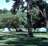 Camping at Springbrook